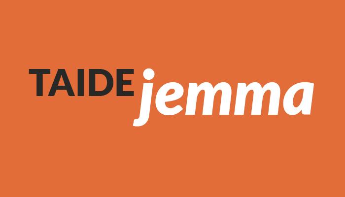 TaideJemma-logo valkoisilla ja tummanharmailla kirjaimilla oranssilla taustalla.